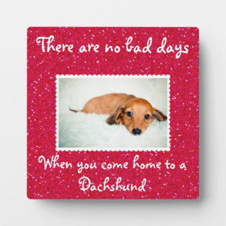 There Are No Bad Days...Photo Ready Pet Plaque
