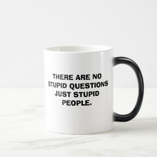 THERE ARE NO STUPID QUESTIONS JUST STUPID PEOPLE. MUGS