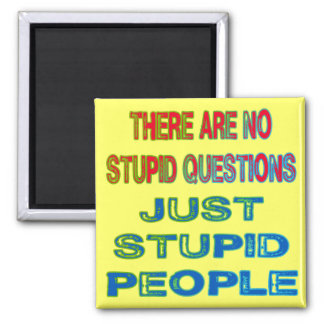 There Are No Stupid Questions Magnet