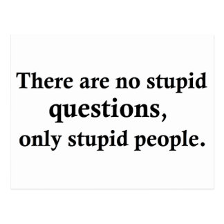 There are no stupid questions, postcard