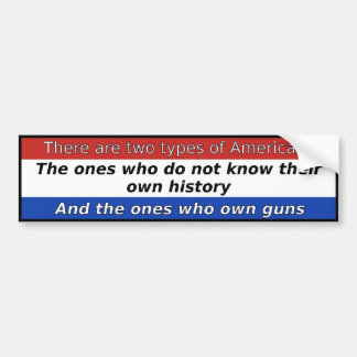 There Are Two Types Of Americans Bumper Sticker