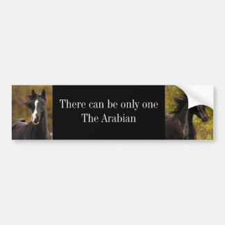 There can be only oneThe Ar... Bumper Sticker