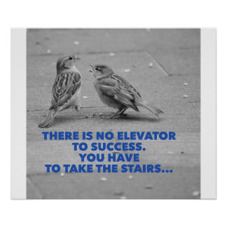 There is no elevator to success - motivation poster