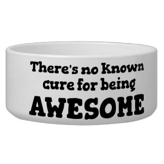 There is No Known Cure for Being Awesome Bowl