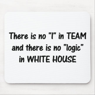 There is no logic in the white house b mousepads