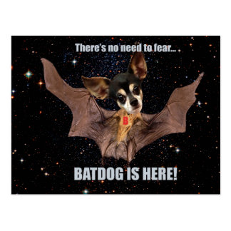 There is no need to fear bat dog is here. postcard