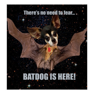 There is no need to fear bat dog is here. poster