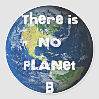 "There is no Planet ""B"" Stickers"