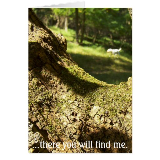 There you will find me. card