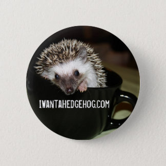 There's a hedgehog in my coffee button