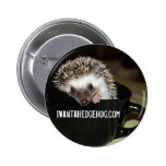There's a hedgehog in my coffee 2 inch round button