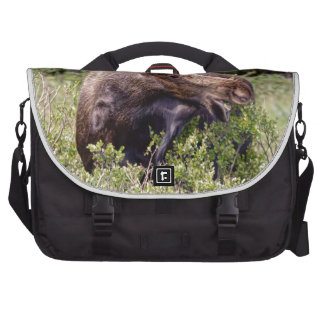 There's A Moose Loose Laptop Bags