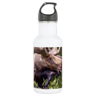 There's A Moose Loose Water Bottle
