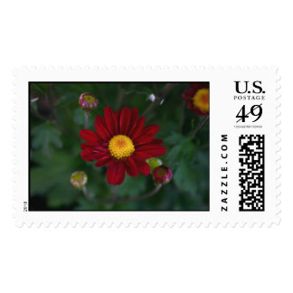 There's a mum in the air... postage stamps
