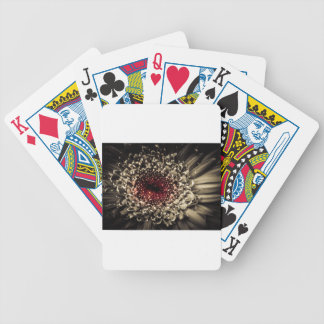There's A Party Going On Right Here Bicycle Playing Cards