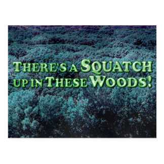 There's A Squatch Up In These Woods! - Basic Postcard
