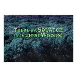 There's A Squatch Up In These Woods! - poster