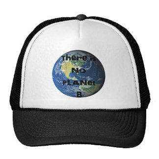 "There's No Planet ""B"" Go Green Hat"