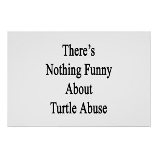 There's Nothing Funny About Turtle Abuse Poster