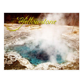 Thermal feature, Yellowstone National Park, WY Postcard