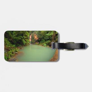 Thermal natural pool bag tag