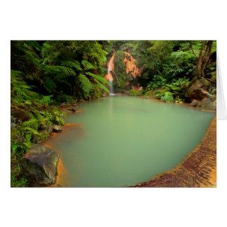 Thermal natural pool card