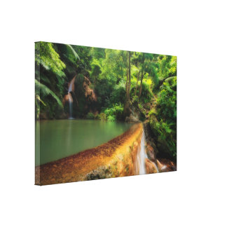 Thermal pool in the forest canvas print