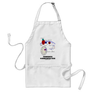 Thermogenesis In Brown Adipose Tissue Adult Apron