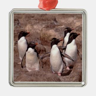 These five Rockhopper Penguins (Eudyptes Metal Ornament