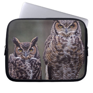 These Great Horned Owls (Bubo virginianus), Computer Sleeve