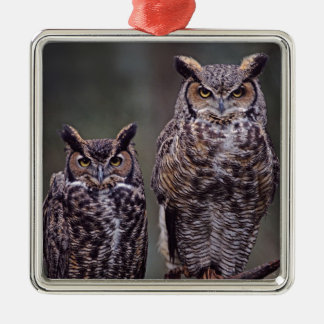 These Great Horned Owls (Bubo virginianus), Metal Ornament