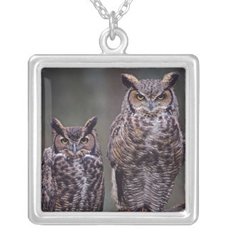 These Great Horned Owls (Bubo virginianus), Square Pendant Necklace