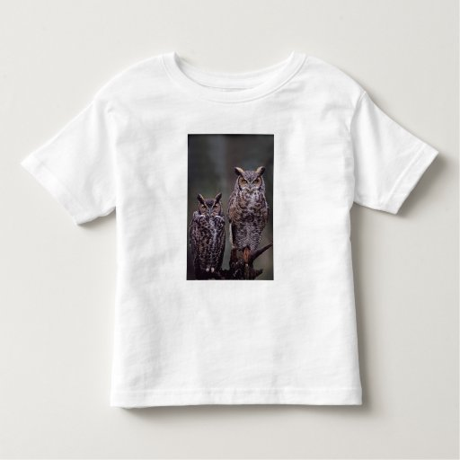 These Great Horned Owls (Bubo virginianus), Shirt
