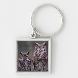 These Great Horned Owls (Bubo virginianus), Silver-Colored Square Keychain