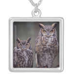 These Great Horned Owls (Bubo virginianus), Silver Plated Necklace