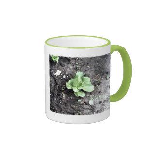 These Quiet Seasons April Bok Choy Ringer Mug