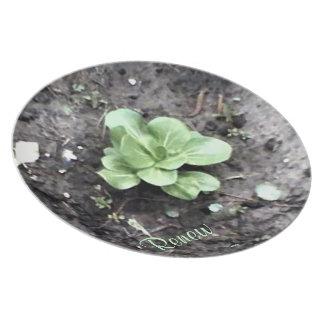 These Quiet Seasons: April Melamine Plate