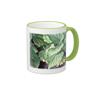 These Quiet Seasons May Hyssop Ringer Mug