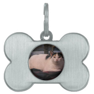 Thessie Pet Tag