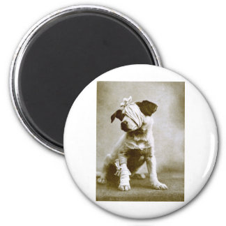 thevictor 2 inch round magnet