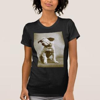 thevictor shirt