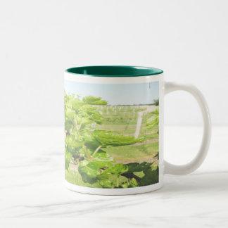 thevinyardmug mugs