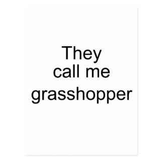 They Call me Grasshopper Postcard