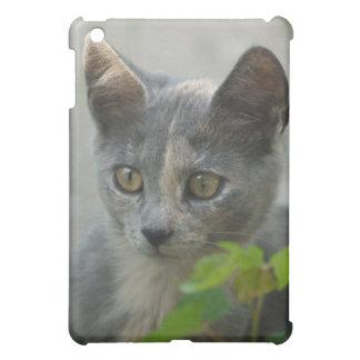 They call me Kitten iPad Mini Cover