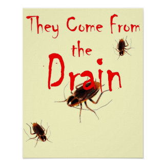 THEY COME FROM THE DRAIN - Scary Cockroach Poster