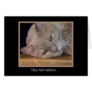 They Feel Sadness Animal Notecards Stationery Note Card
