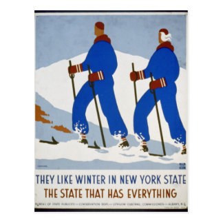 They like winter in New York State Postcard