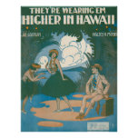 They're Wearing 'Em Higher In Hawaii Poster