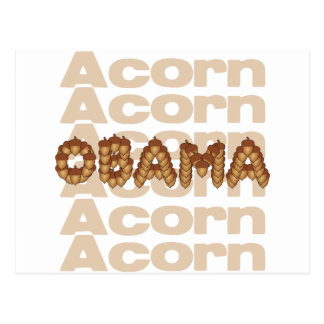 They were made for each other: Acorn and Obama Postcard