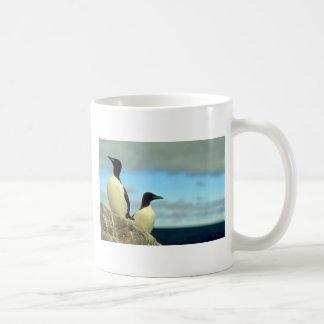Thick-billed Murres, Hudson Bay, NWT, Canada Classic White Coffee Mug